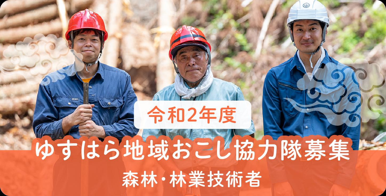 ゆすはら地域おこし協力隊募集/森林・林業技術者